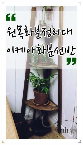원목화분정리대 / 이케아화분선반 :-)