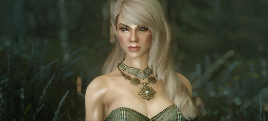 Minerva - Custom High Elf Voiced Follower 2.5 한글화 (문장 교정)