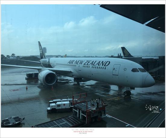 뉴질랜드 여행 - 뉴질랜드 여행경비