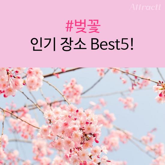 [카드 뉴스] #벚꽃 인기 장소 Best5!