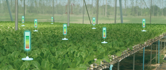 농업의 혁신을 주도하는 로봇 기술