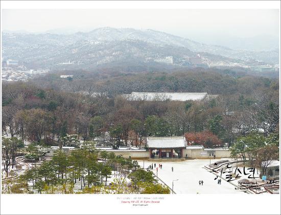 서울여행 다시세운광장 9층에서 바라보는 풍경