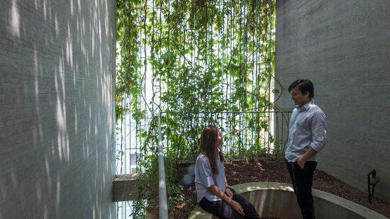 *건물외벽 녹화 베트남 리니어 하우스 [ Vo Trong Nghia Architects ] Plant curtain drapes over Breathing House