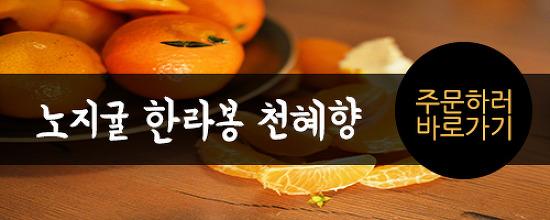 <미> 남해에서 온 아름다운 시집