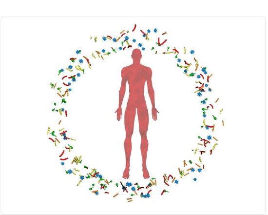 선옥균 발효한약 미생물 생존 온도와 증식속도