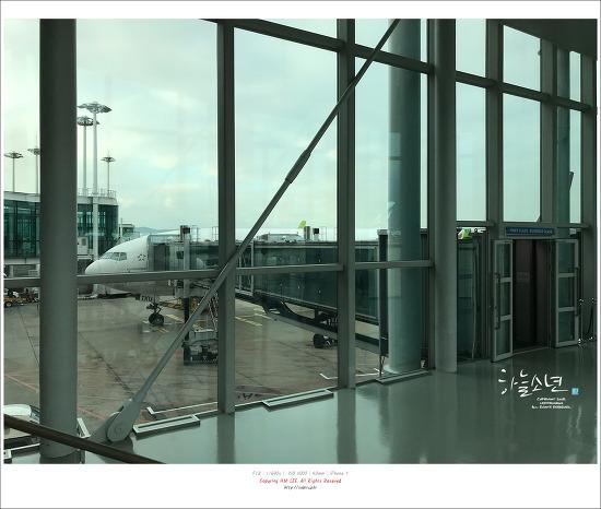 타이항공 인천-대만 TG635 비즈니스 탑승후기