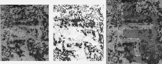 '반파'는 광개토대왕비 신묘년 기사의 숨은 주인공이다