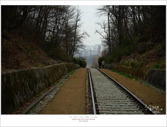 서울 사진 찍기 좋은 곳 - 항동철길 푸른수목원