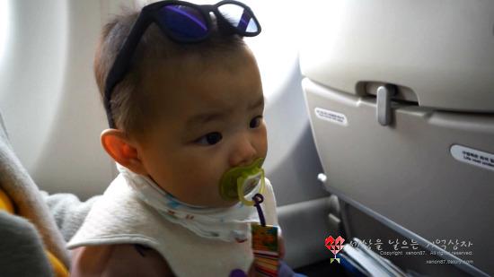 7개월 아기의 첫 비행 - 2박3일 제주도 여행기(아쿠아플라넷, 여미지식물원, 섭지코지)