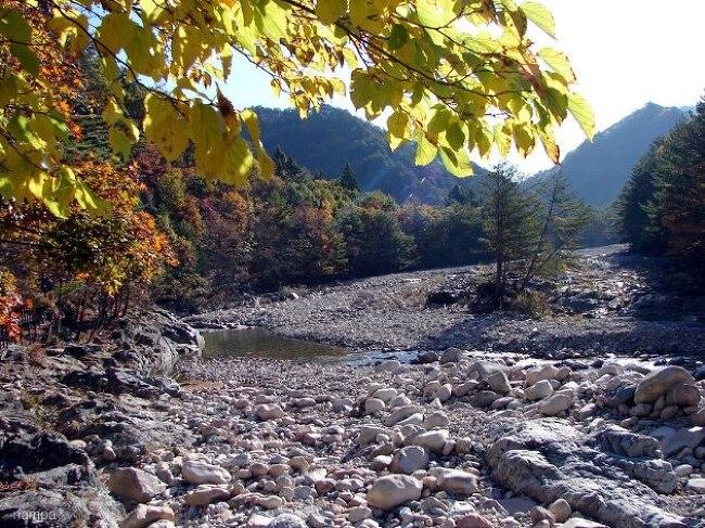 콸콸 흐르는 계곡이 그립다.