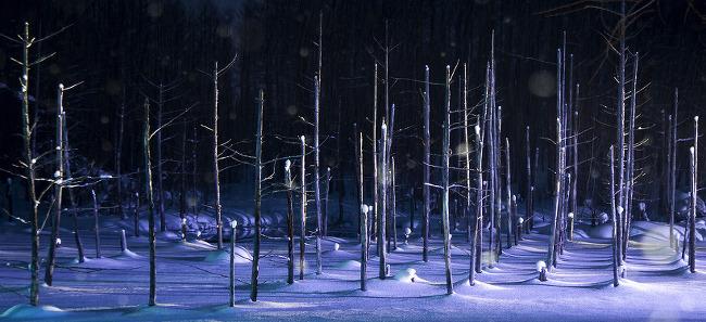 일본 북해도 비에이의 아름다운 겨울풍경