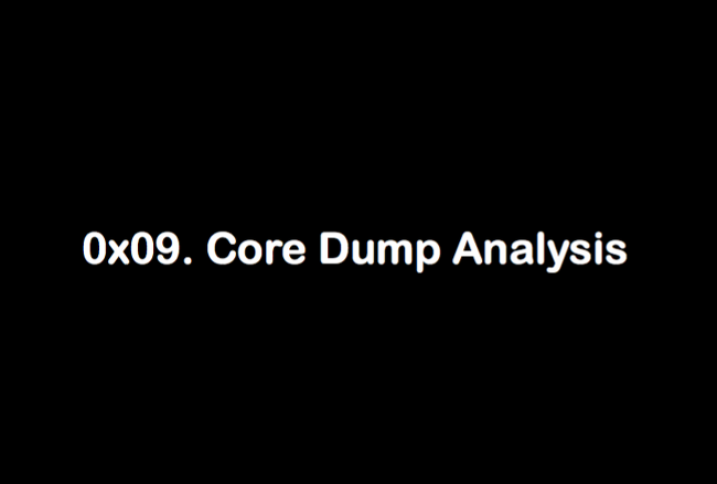 8. Core Dump Analysis ( gdb )