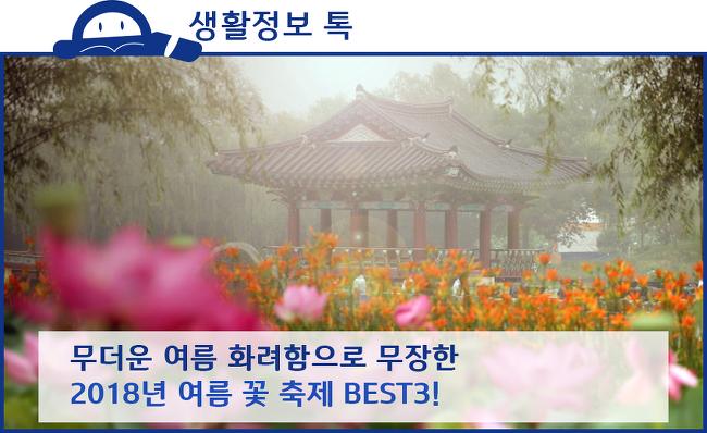 2018년 여름 꽃 축제 BEST 3! (부여서동연꽃축제, 태백 해바라기 축제, 태안백합꽃축제)