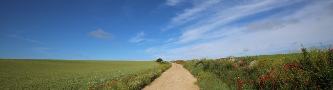 [이상기의 마루금 걷기] 또 다른 나를 만나는 길(Camino de Santiago) <제1화> 순례길 준비하기
