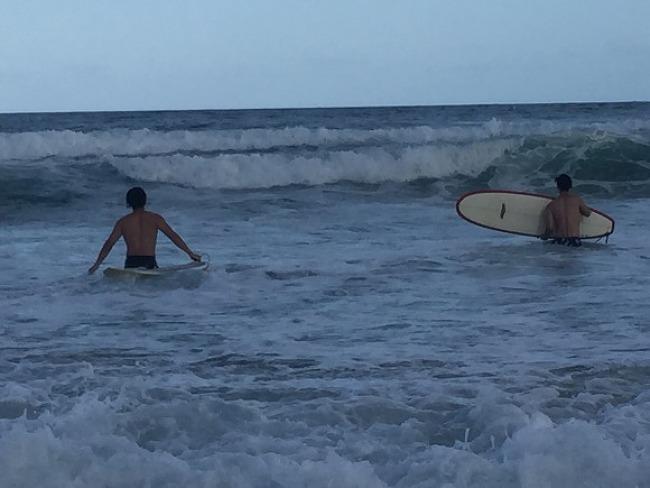 서핑은 골드코스트에서~! (첫 도전기)