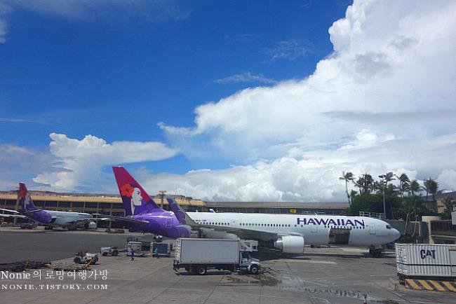 하와이안 항공 비즈니스 클래스 탑승기 & 플루메리아 라..