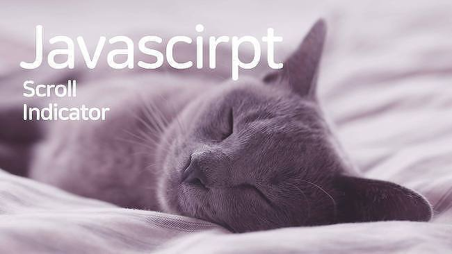 [Javascript] screen  객체