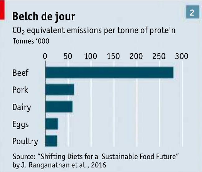 육류별 이산화탄소(CO2) 배출량