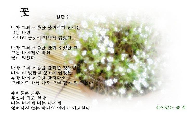 김춘수-꽃