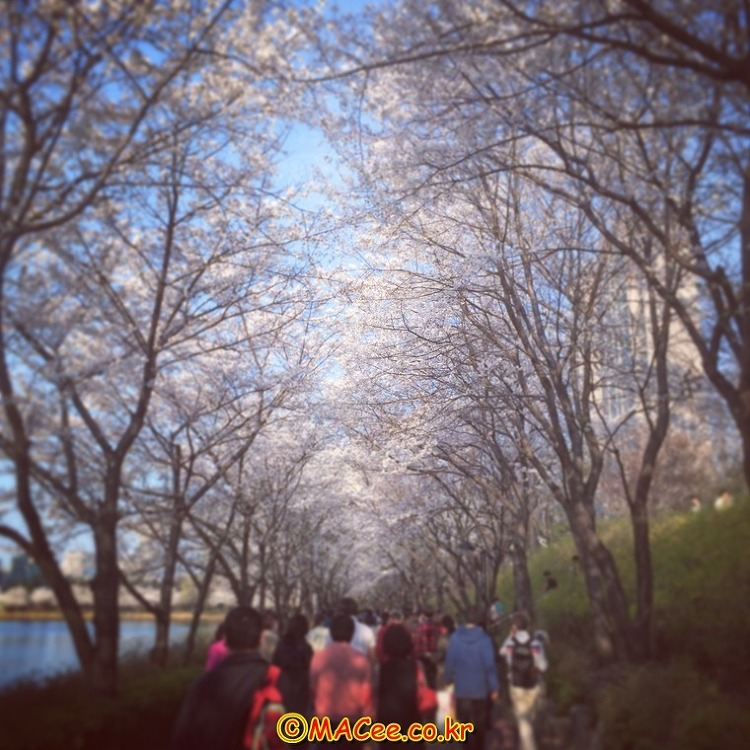 [Instagram] 인스타그램으로 기록한 일상 - 2014. MARCH (2/2)