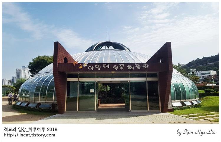 [적묘의 시선]대연 수목 전시원,유리온실,아열대식물체험관