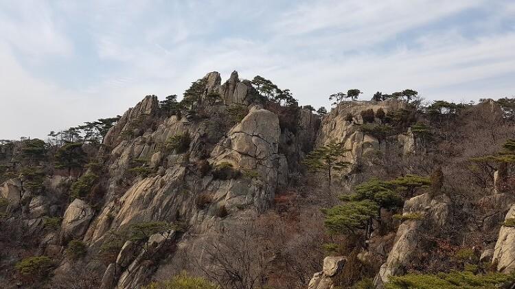 [일요산행] 관악산 무명능선 190303