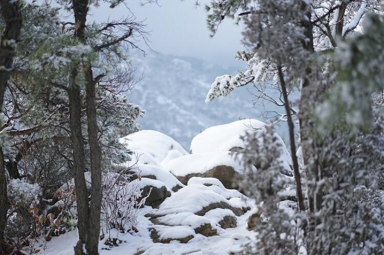 [토요산행] 관악산 눈꽃산행 181124