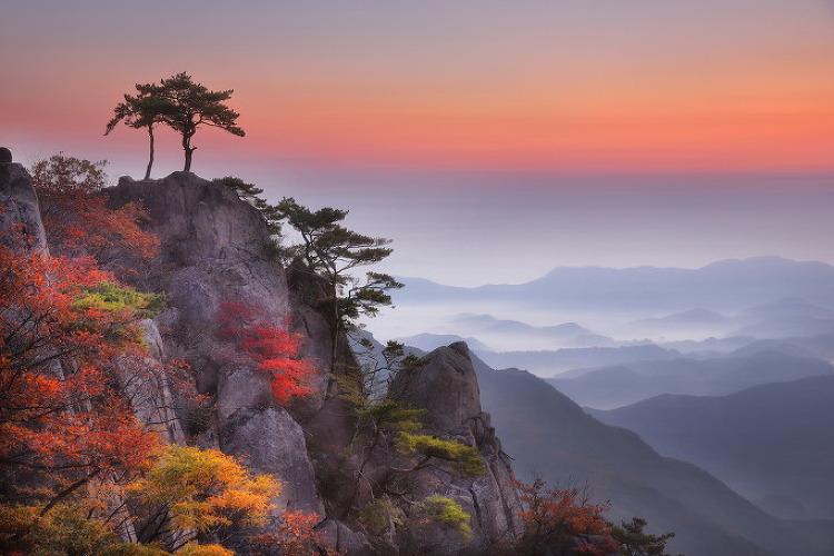 대둔산 V 계곡 가을 단풍 (10월 17일)