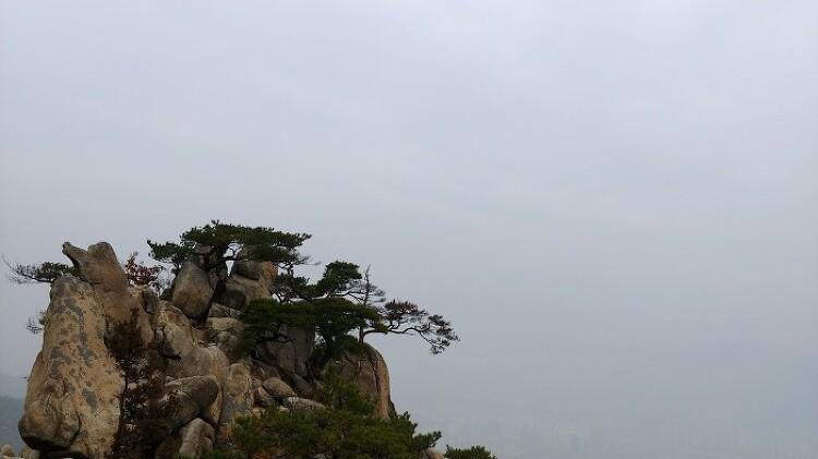 [일요산행] 관악산 6봉 8봉 181111