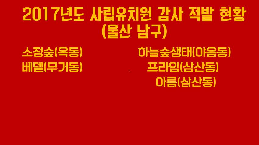 2017년도 사립유치원 감사 적발 현황 - 울산 남구