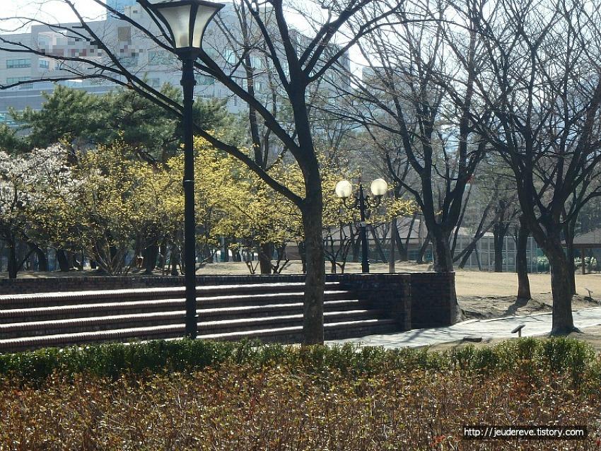 동네공원에서 느끼는, 다가오는 봄