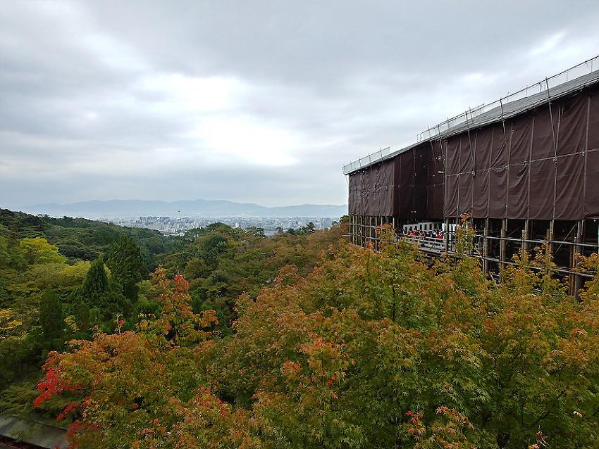 [미도리의 교토 여행] 가을 단풍 구경 2박 3일..