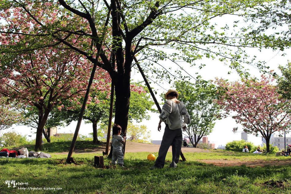 에비스에서 출발해서 다이칸야마, 나카메구로 산책하기
