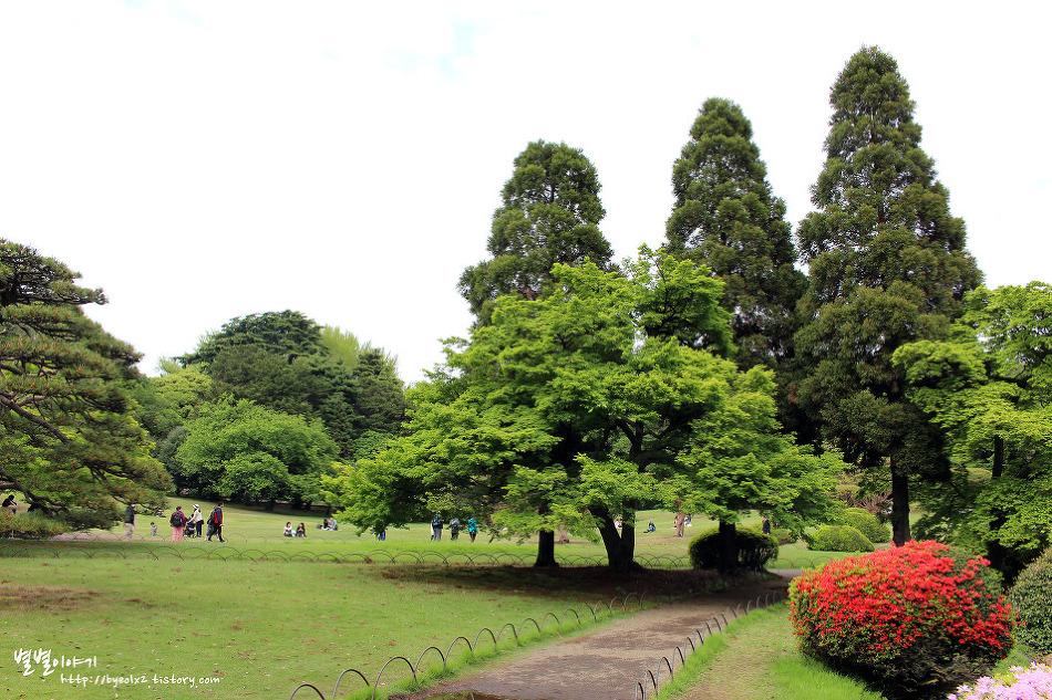 언어의 정원 배경지를 찾아서 ::신주쿠교엔(新宿御苑)