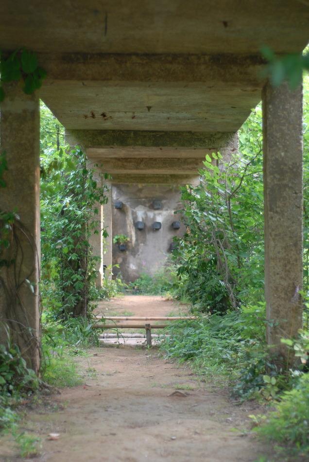 선유도공원