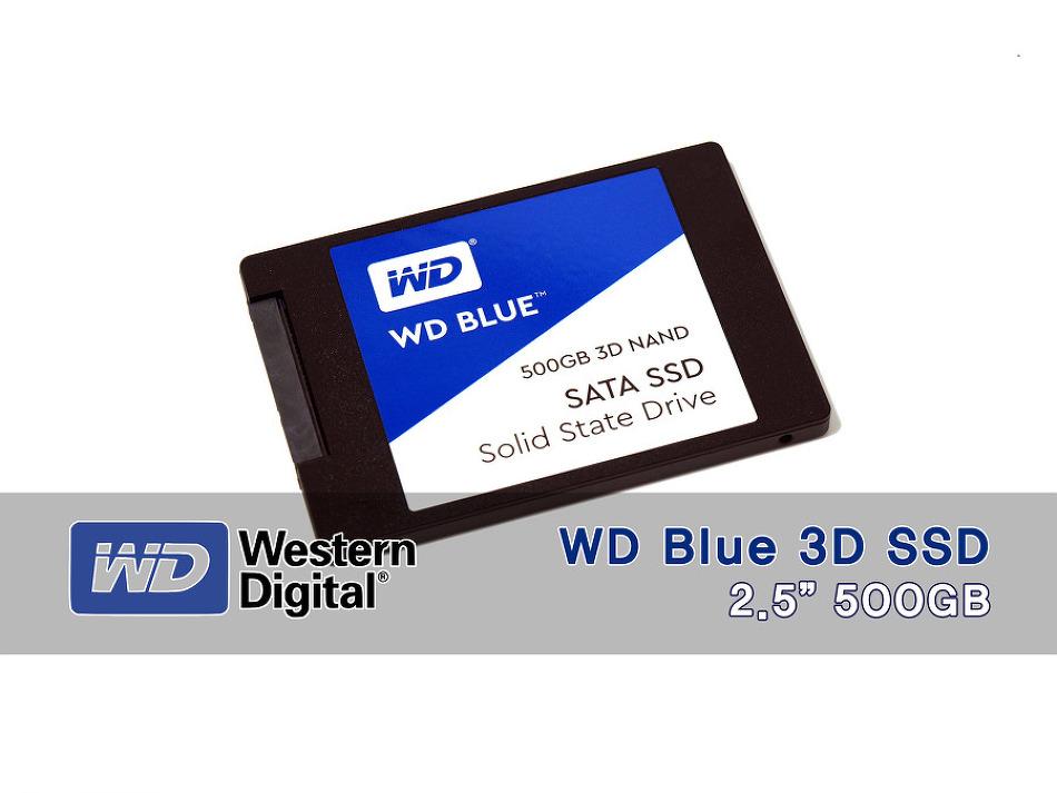 블루의 명성을 이어간다. WD Blue SSD 필드테..