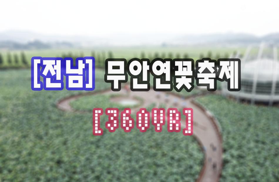 [무안] 무안연꽃축제 360VR