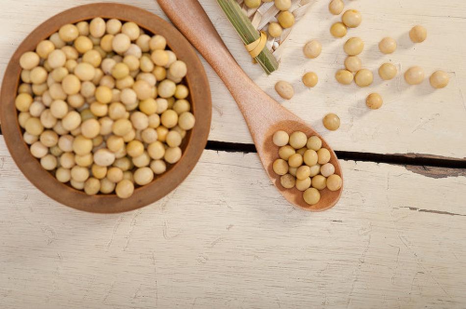 식물성단백질로 콜레스테롤 낮추는 음식, 콩의 효능
